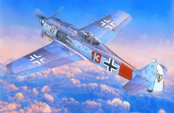 Mistercraft Fw-190A-7 JG-1