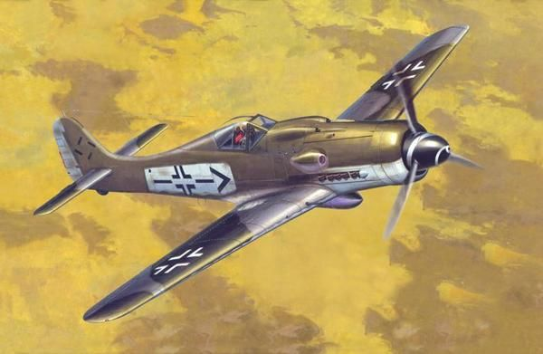 Mistercraft Fw-190D-9 Rudel