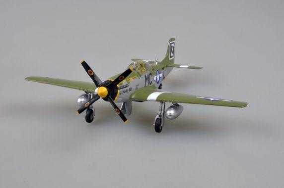Easy Model P-51D 79FS