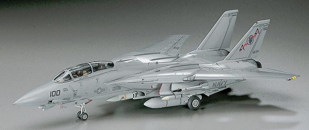 Hasegawa F-14A Tomcat (Low Visibility)