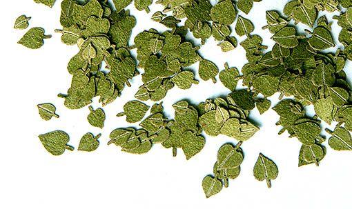 Plus Model Linden Green Leaves (hárs)