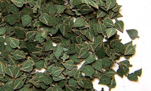 Plus Model Birch Green Leaves (nyír)