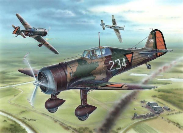 "Special Hobby Fokker D.21 ""Dutch and Danish"""