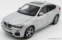 Paragon BMW X4 XDRIVE 3.5d (F83) 2014 - GLACIER SILVER