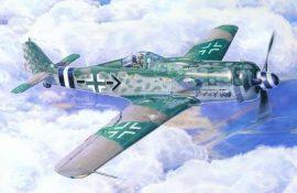 Mistercraft Fw-190D-9 Michaelski