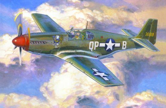 Mistercraft P-51 B-5 Bee makett
