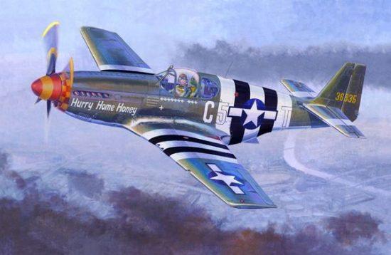 Mistercraft P-51 B-5 Hurry Home Honey makett