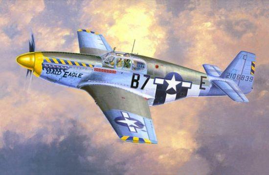 Mistercraft P-51 B-15 Bald Eagle makett