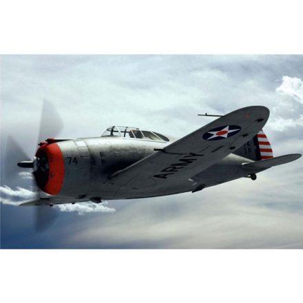 Dora Wings Republic P-43 Lancer makett