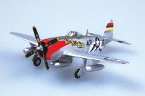 Easy Model P47D-531FS, 406FG