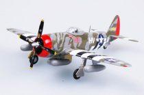 Easy Model P47D-61FS,56FG
