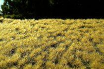 Model Scene Autumn turfs 6mm (fűcsomó)