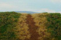 Model Scene Causeways - spring with dry turfs