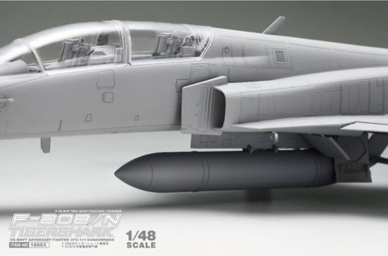 Freedom F-20B/N Tiger Shark makett