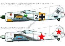 "HAD FW-190 A-4 ( JG54 ""Black 2""; + captured ""black 2"" for Soviet Army)"