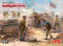 ICM Gallipoli (1915)
