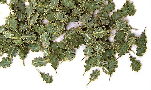 Plus Model Oak Green Leaves (tölgy)