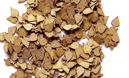 Plus Model Birch Leaves (nyír)