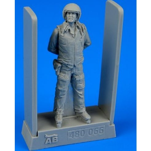 Aerobonus Soviet air force fighter pilot