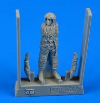 Aerobonus Soviet naval air force pilot (AV-MF) 1975 - 1983