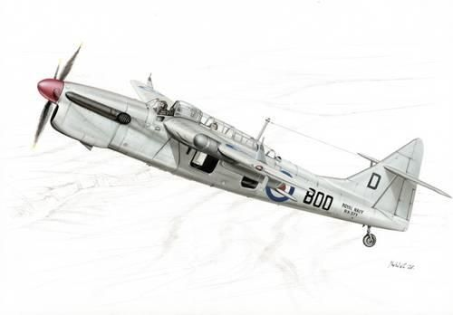 Special Hobby Fairey Barracuda Mk. 5 makett