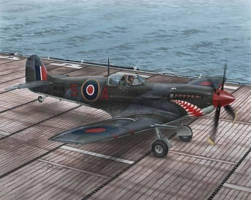 Special Hobby Supermarine Seafire Mk.II Torch & Avalan