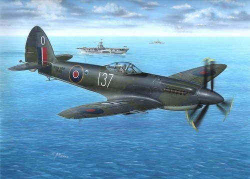 Special Hobby Supermarine Seafire Mk.47 makett