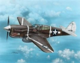 """Special Hobby P-40F Warhawk """"Guadalcanal Hawks"""""""