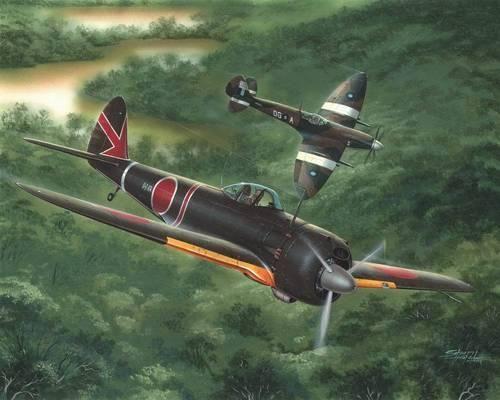 Special Hobby Nakajima Ki-43-III Ko Hayabusa makett