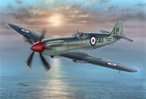 Special Hobby Supermarine Seafire Mk.45 makett
